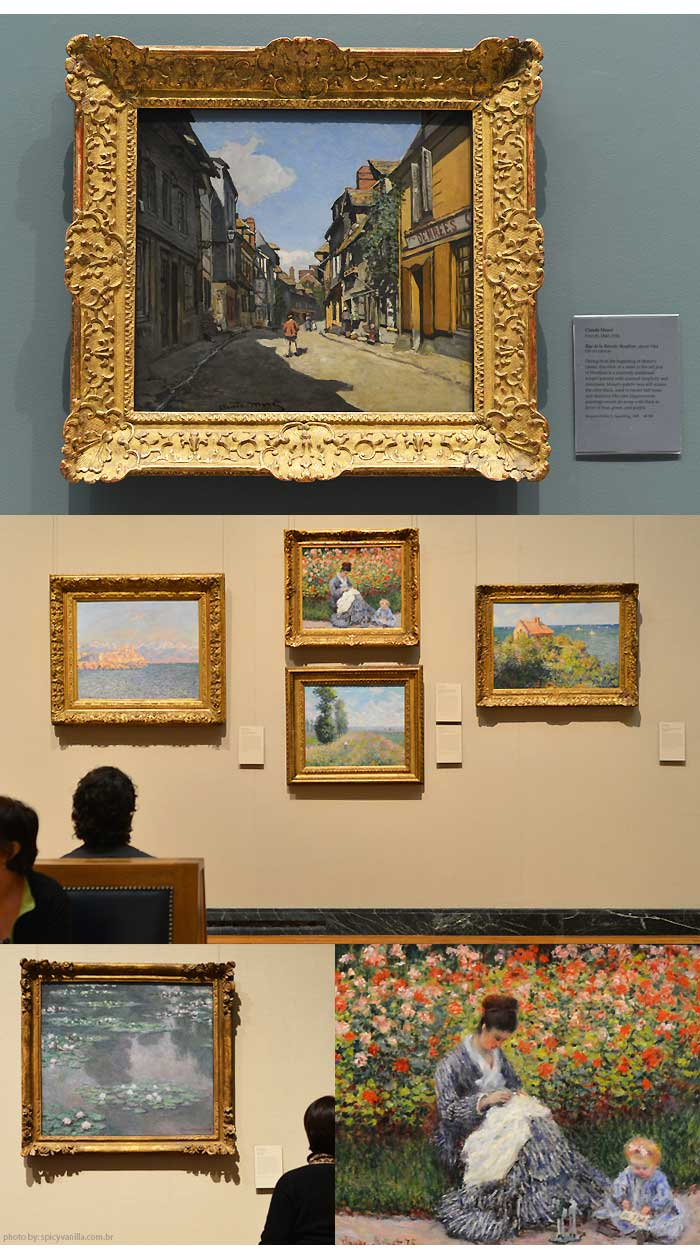 Museum of Fine Arts, monet 3