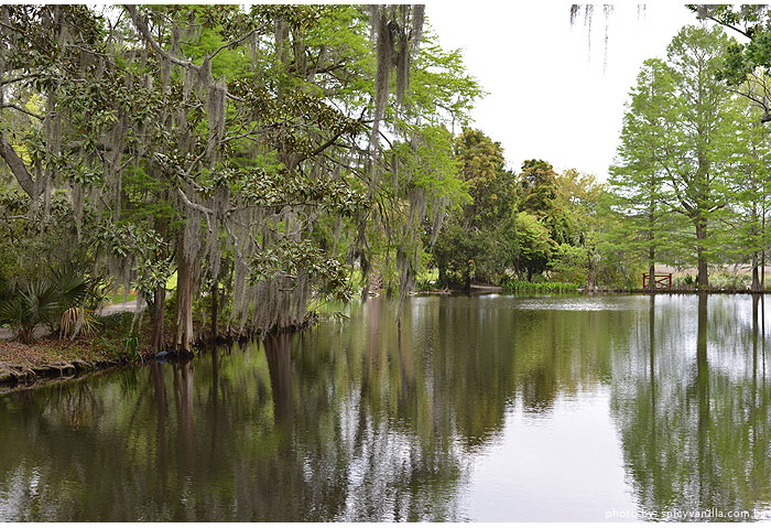magnolia plantation lago - Charleston-SC | Magnolia Plantation and Gardens