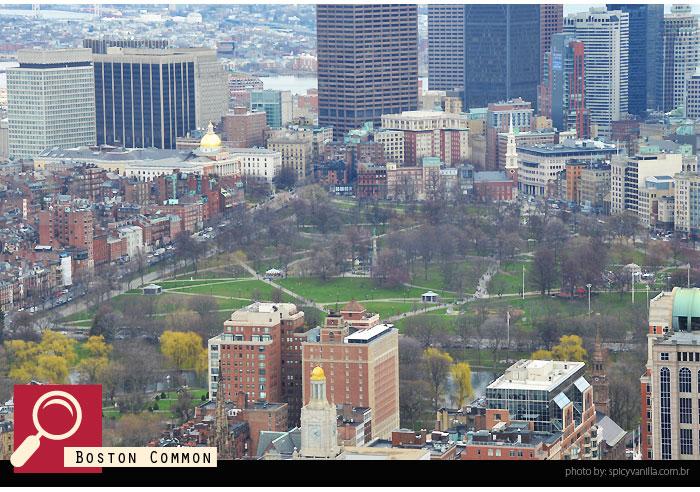 skywalk_boston_common