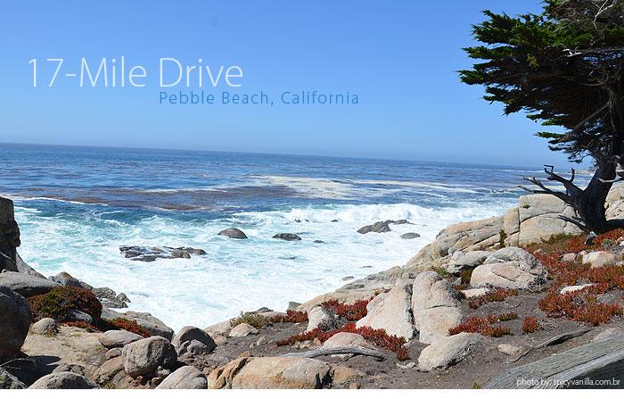 17_mile_drive_capa