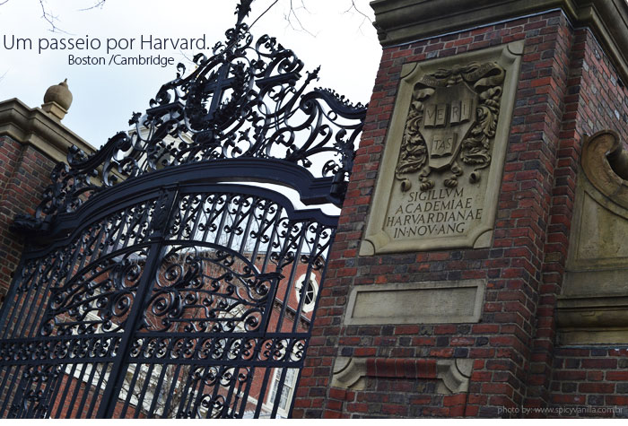 boston_harvard_capa