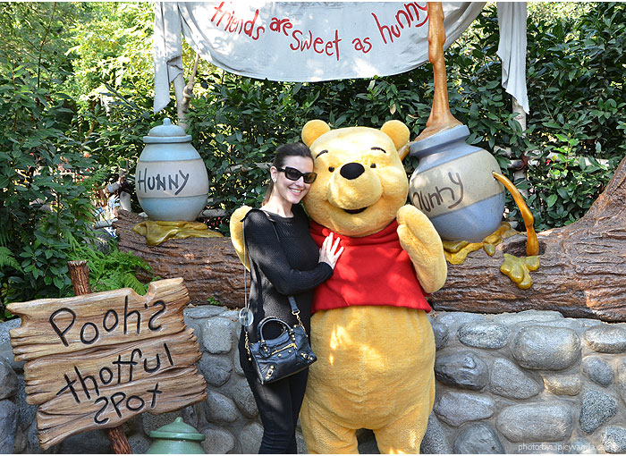 disneyland-pooh