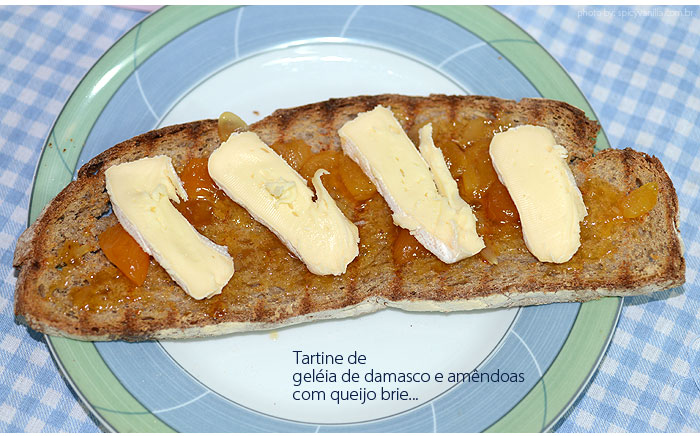 tartine_brie_damasco