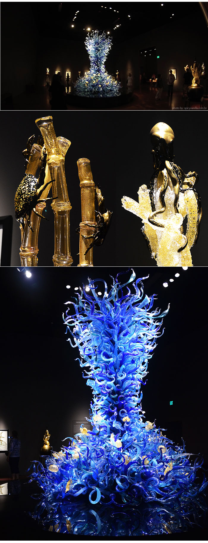 Chihuly_Garden_sea