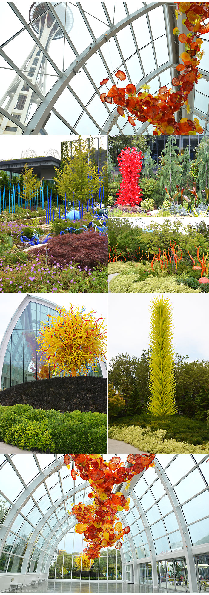 Chihuly_Garden_seattle_center