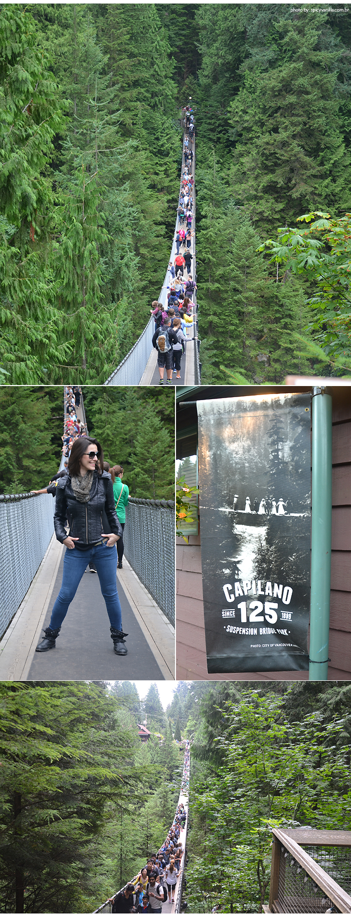 Capilano_Suspension_Bridge_ponte