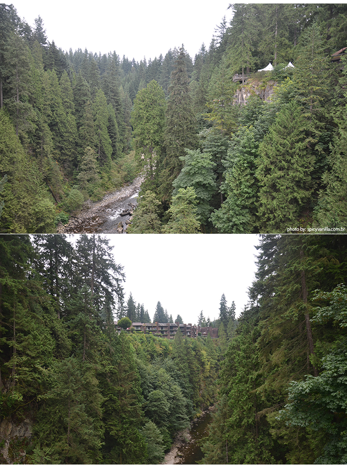 Capilano_Suspension_Bridge_vista