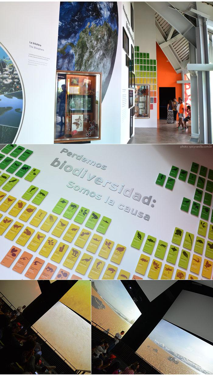 biomuseo_panama_biodiversidade