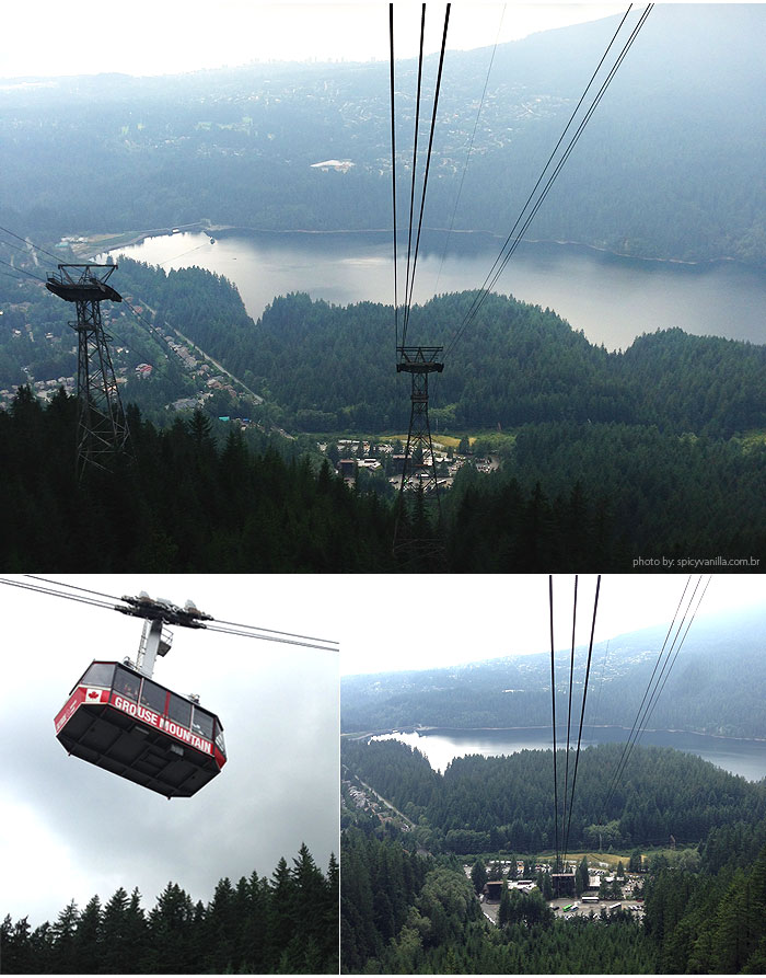 grouse_mountain_vista
