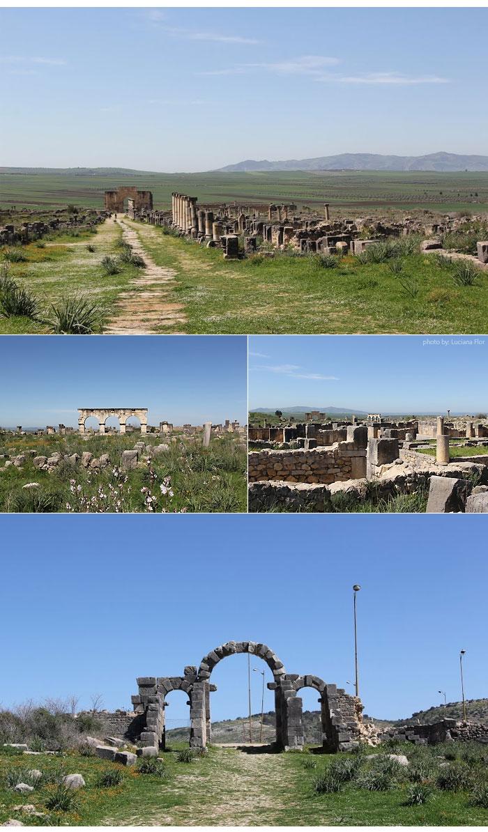 marrocos_volubilis_ruinas