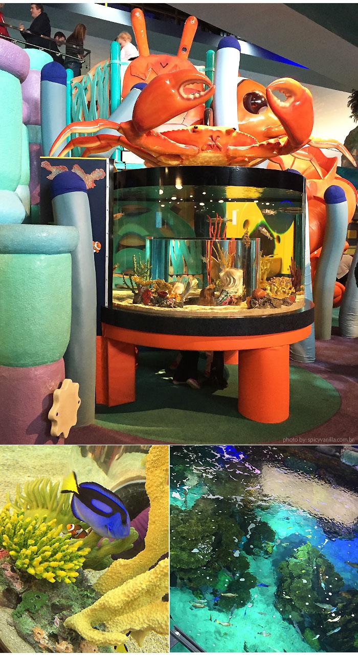 ripleys_aquarium_crianca