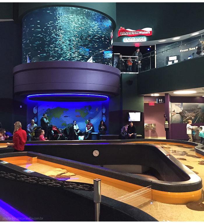 ripleys_aquarium_geral