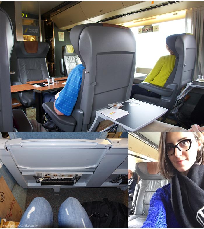 trem_canada_first_class