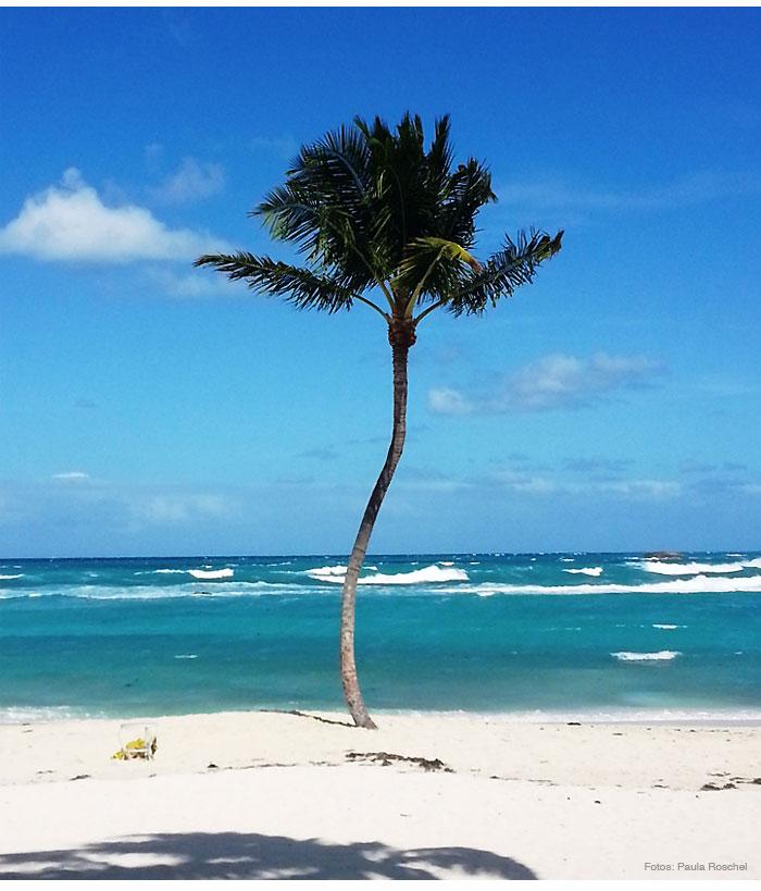 caribe bahamas