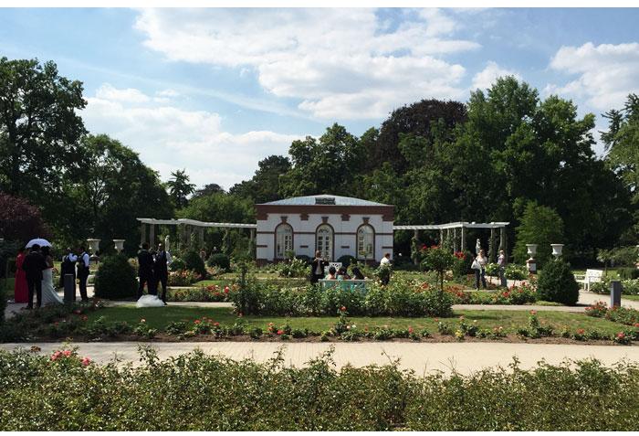 bothanic garden bride frankfurt