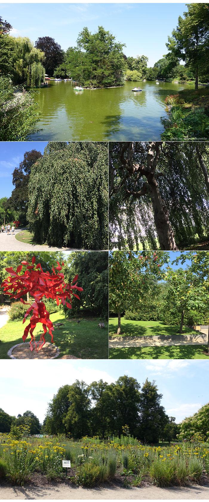 bothanic garden turismo frankfurt