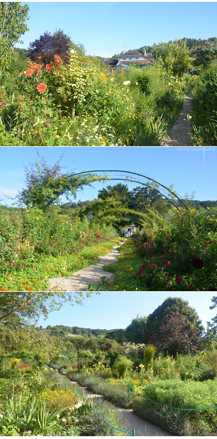 giverny-jardins-de-monet-flores