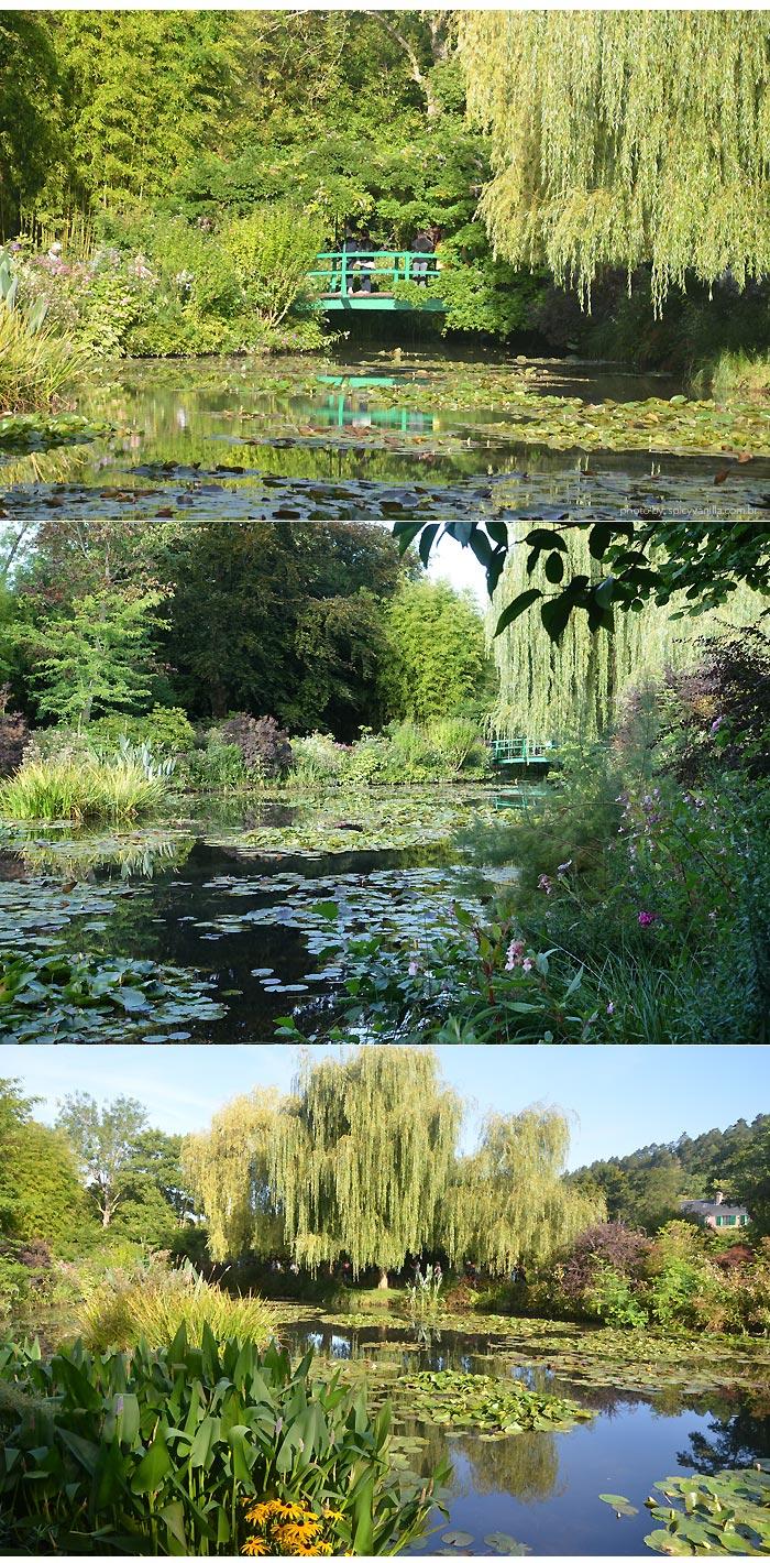 giverny-jardins-ninfeias