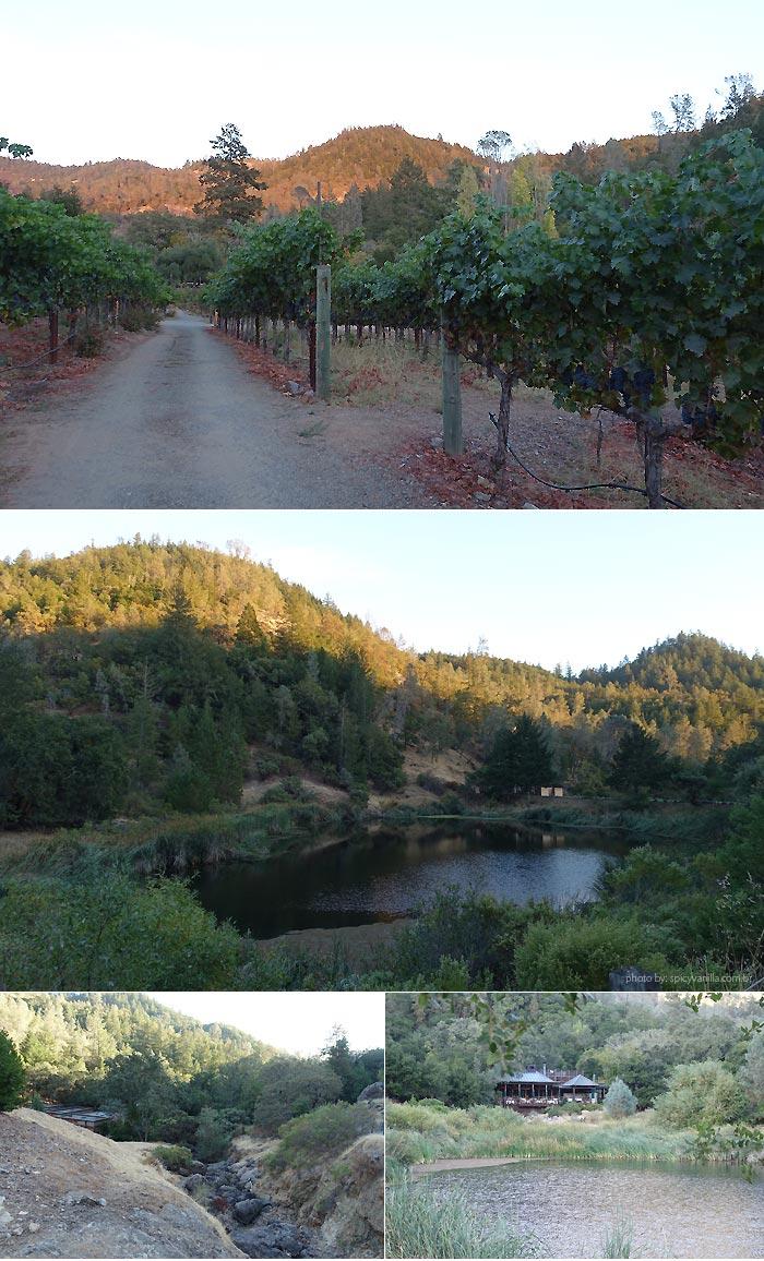 calistoga-ranch-nature