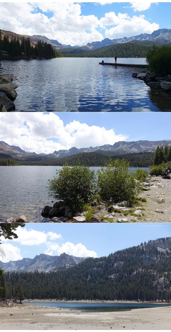 mammoth-lagos