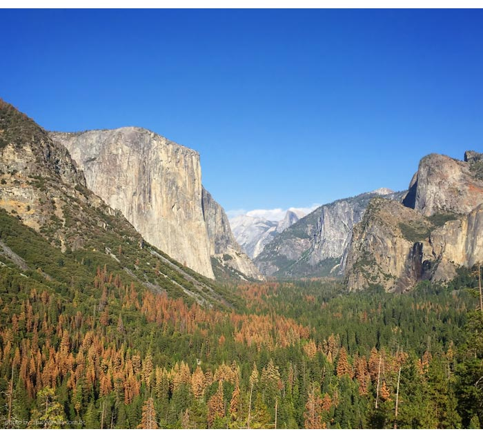yosemite-tunnel-view