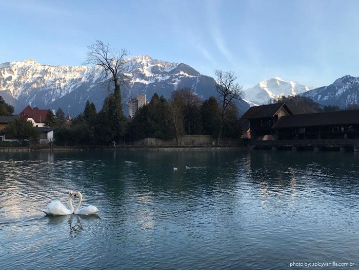interlaken capa - Suíça | Como chegar e o que fazer em Interlaken, cidade próxima ao Jungfrau