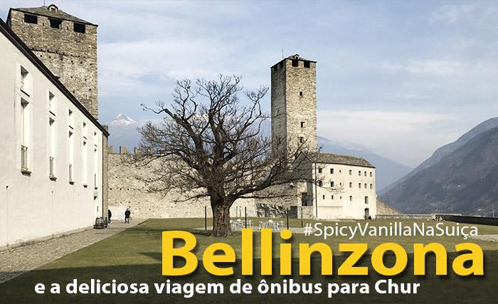 bellinzona chur onibus 1 - Suíça | Os castelos de Bellinzona e a viagem até Chur (Coira)
