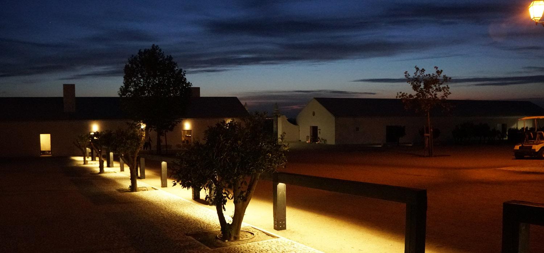 Alentejo | Hotel Torre de Palma na rota do vinho e um passeio por Évora